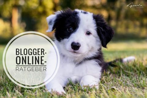 Blogger-Online-Ratgeber – das praktische eBook rund um den Hundewelpen