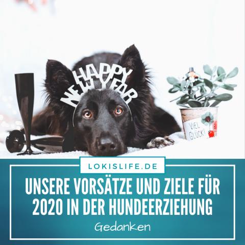 Unsere guten Vorsätze und Ziele als Mensch-Hund-Team für 2020