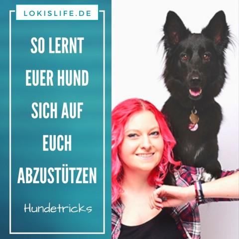 Hundetrick: So bringst du deinem Hund bei, sich von hinten auf deinen Schultern abzustützen