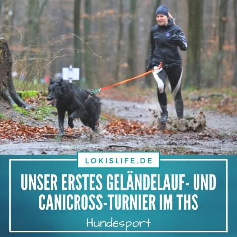 Turnierhundesport: So verlief unser erstes Geländelauf- und CaniCross-Turnier im THS
