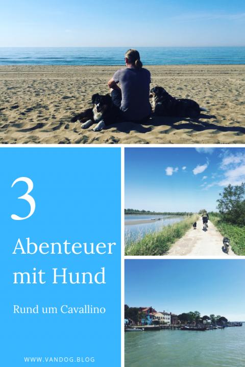 Cavallino mit Hund – Meine Top 3 Abenteuer