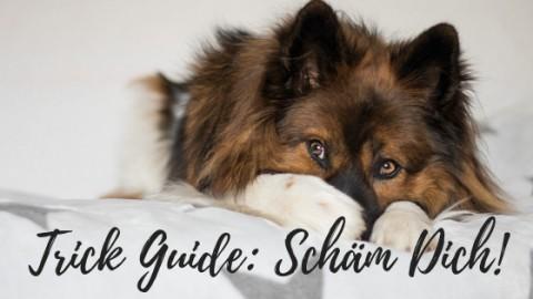 Trick-Guide: Schäm Dich