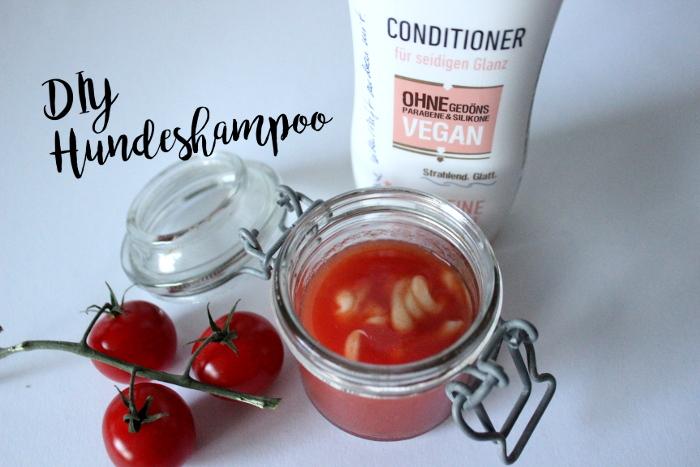 DIY Hundeshampoo Shampoo aus Tomaten
