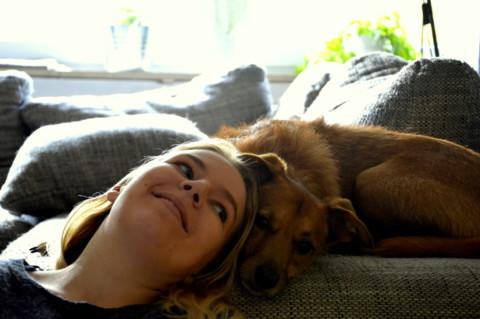 8 Dinge – die Hunde an uns gar nicht toll finden