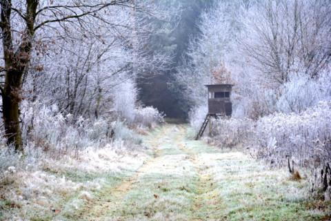 Endlich Winter – Unsere Bilderserie zum Jahreswechsel