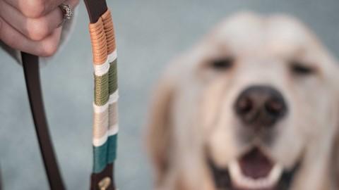 DIY Hundeleine aus Biothane