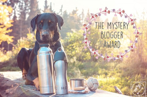 THE MYSTERY BLOG AWARD GOES TO US