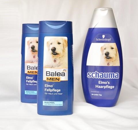 Rüden-Shampoo und Fellpflege