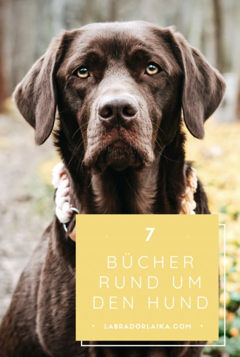 Buchempfehlungen für Hundehalter