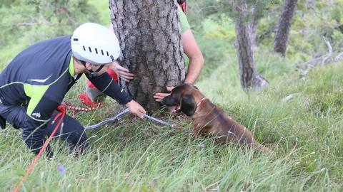 """Happy End: Bergwacht rettet ausgebüchsten """"Zorro"""" aus misslicher Lage"""