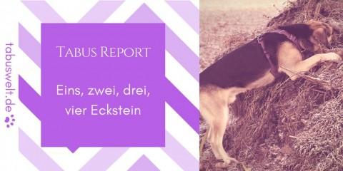 Tabus Report – Eins, zwei, drei, vier Eckstein
