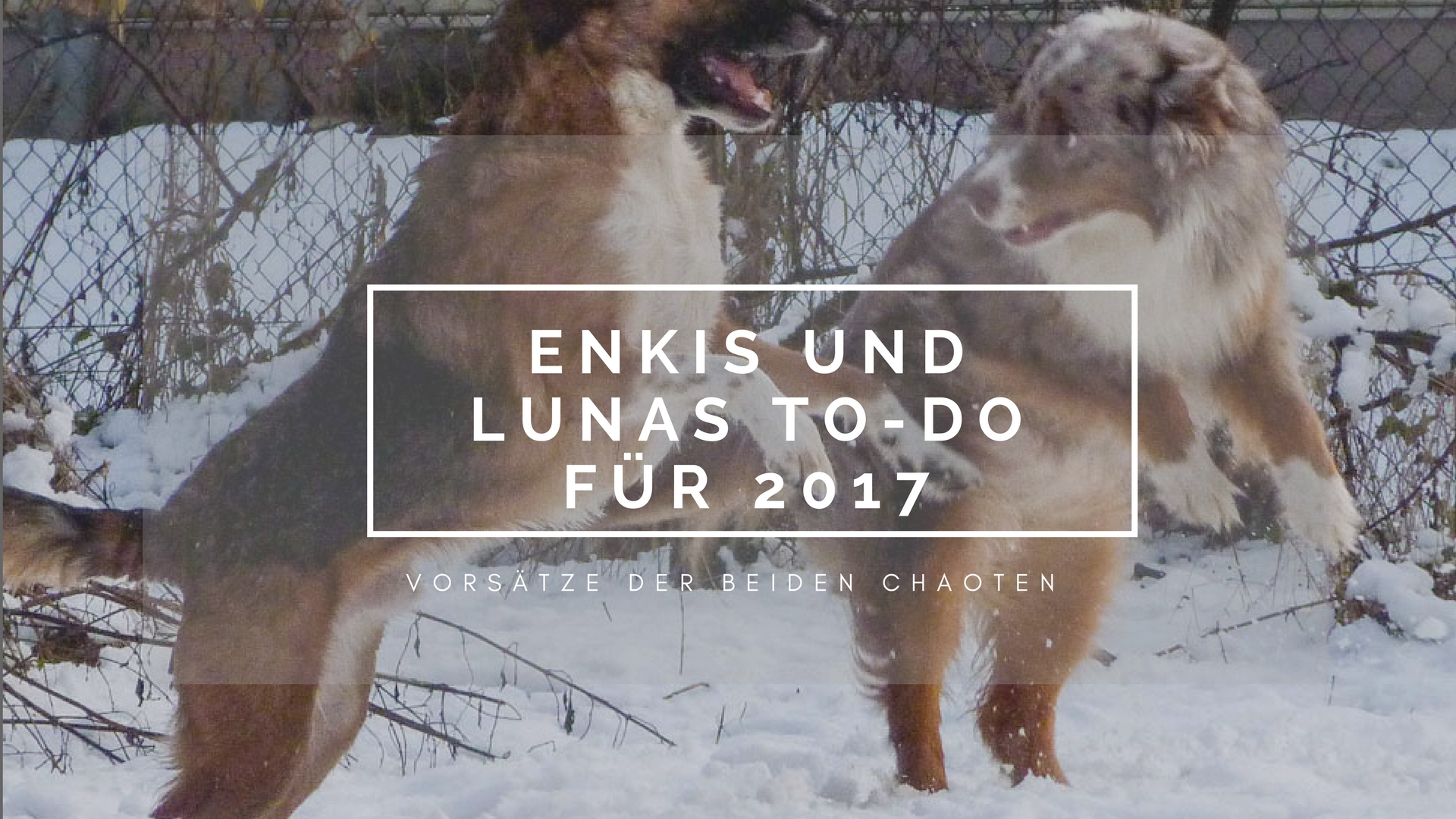 Enkis und Lunas To-Do 2017