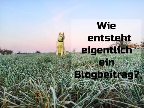 Wie entsteht eigentlich ein Blogartikel?