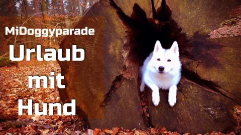 MiDoggyparade – Urlaub mit Hund
