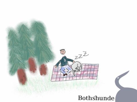 Entspannter Spaziergang mit Hund – Teil 2: Ruheinseln