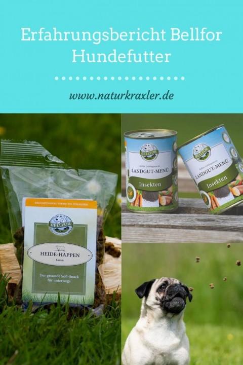 Produkttest Bellfor Insektenfutter