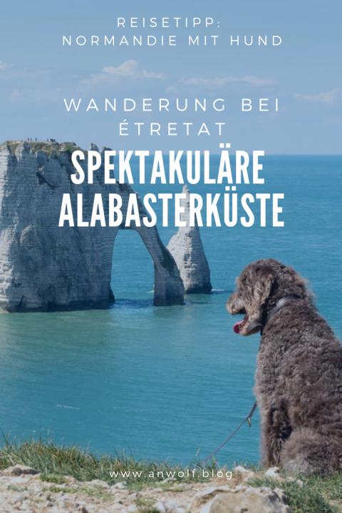 Normandie mit Hund – Wandern bei Étretat
