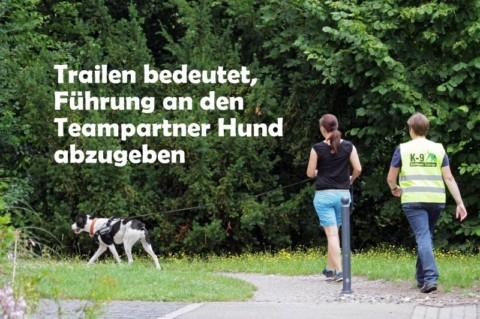Trailen bedeutet, Führung an den Teampartner Hund abzugeben