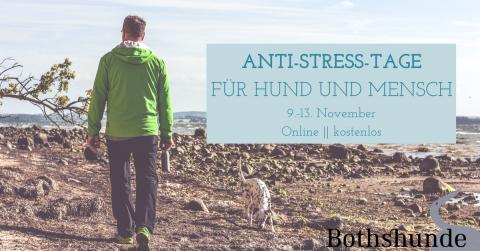 Anti-Stress-Tage für Hund und Mensch