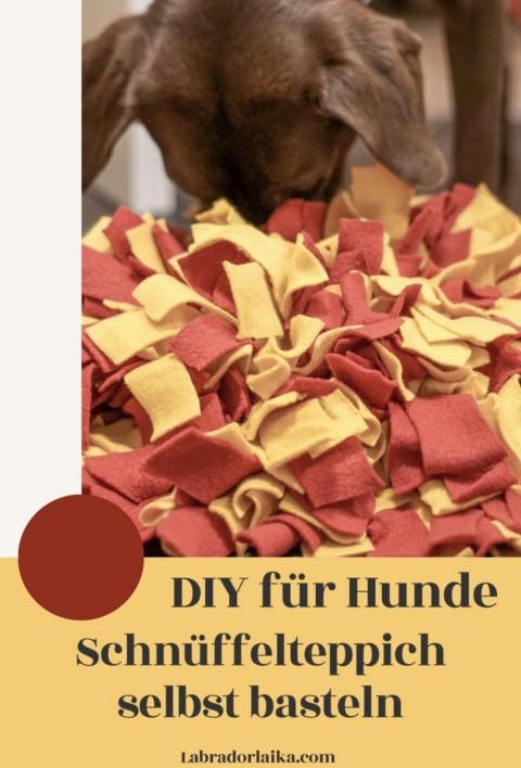 DIY für Hunde – Schnüffelteppich selbst basteln