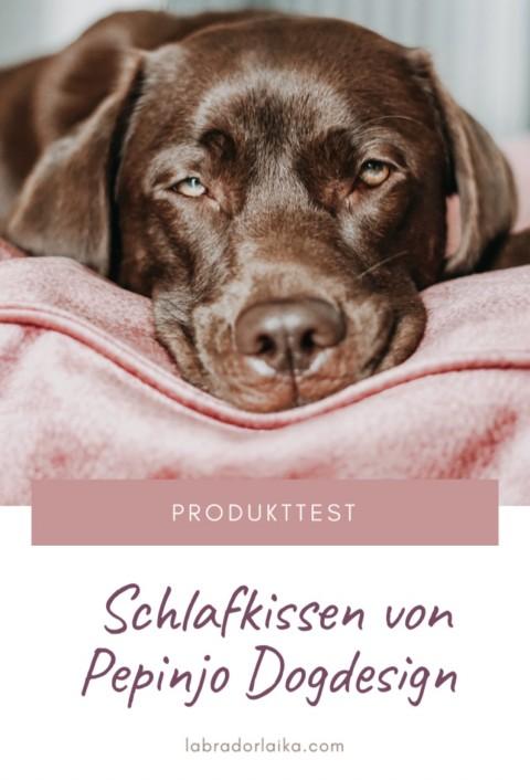 Produkttest – Schlafkissen von Pepinjo Dogdesign