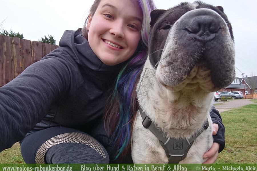 Februar Malous Rabaukenbande Shar Pei Kingston Hunde Fotografie Shooting Hund Blog Freizeit Winter Schnee Abenteuer Blumen Alltag Sport Joggen