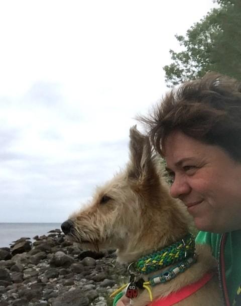 miDoggy Parade: Urlaub mit oder ohne Hund