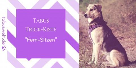 "Tabus Trick-Kiste: ""Sitz auf Entfernung"""