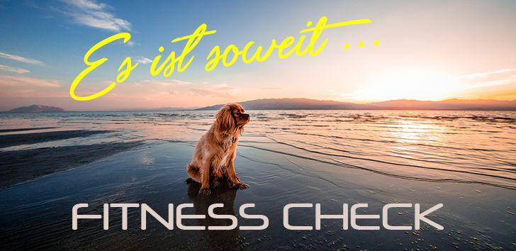 Fitness Check für den Hund