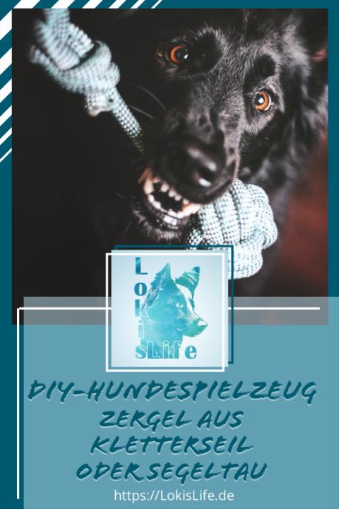 DIY-Zergel aus Segeltau oder Kletterseil für deinen Hund