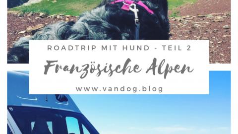 Col Cruising 2 – Mit Wohnmobil und Hund auf Frankreichs Alpenpässen