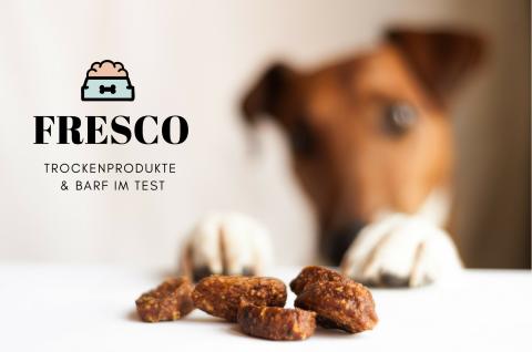 [Produkttest] Wir testen FRESCO!
