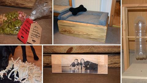 12 DIY Geschenkideen für Hundebesitzer