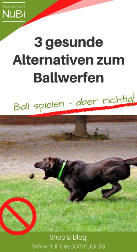 Warum Ball werfen deinem Hund schadet und was du stattdessen tun kannst