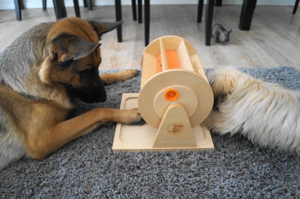 Intelligenzspielzeug Hund Erfahrungen