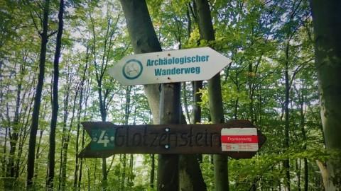 Von Leuzenberg zum Glatzenstein – Wandern mit Hund im Nürnberger Land