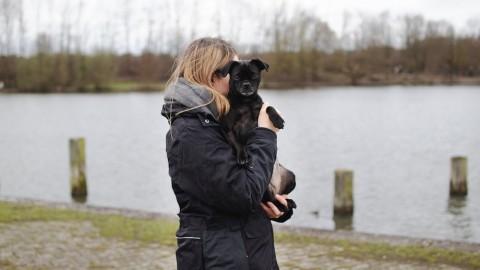 Die perfekte Jacke für Hundehalter [Werbung]