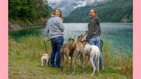 Urlaub mit Hund – Rußbach, Gosau, Traunsee – Salzburg & Oberösterreich