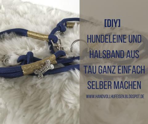 [DIY] Anleitung für eine individuelle Hundeleine und ein Halsband aus Tau – so einfach geht's!