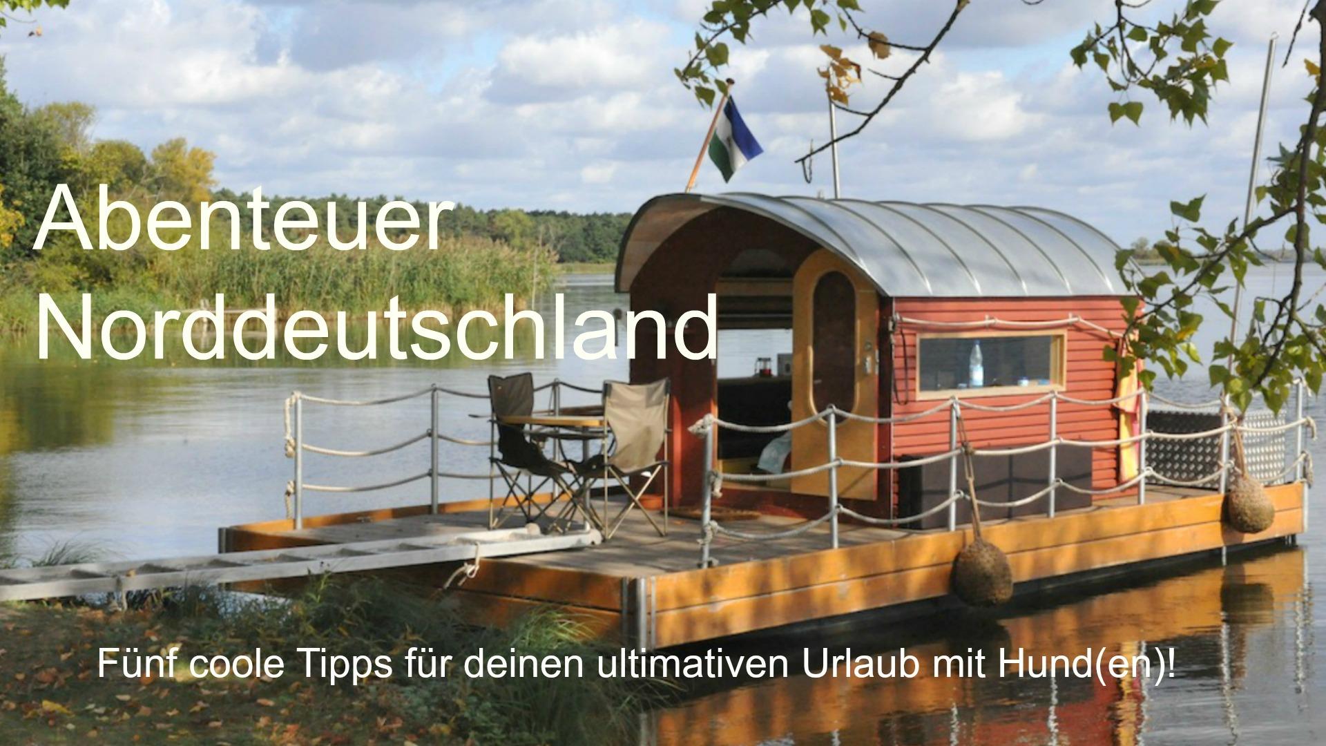 Ausflugtipps mit Hund in Norddeutschland