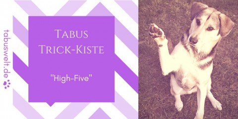 "Tabus Trick-Kiste: ""High Five"""