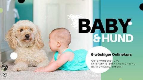 """Unser Onlinekurs """"Baby & Hund – entspannt und glücklich!"""""""