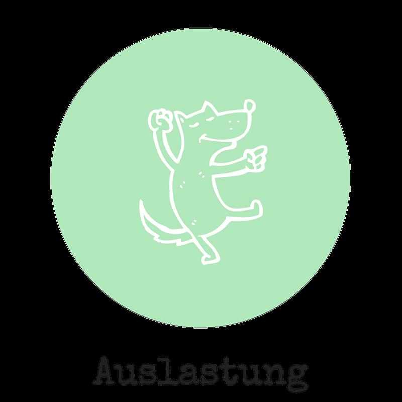 Hunde Auslastung