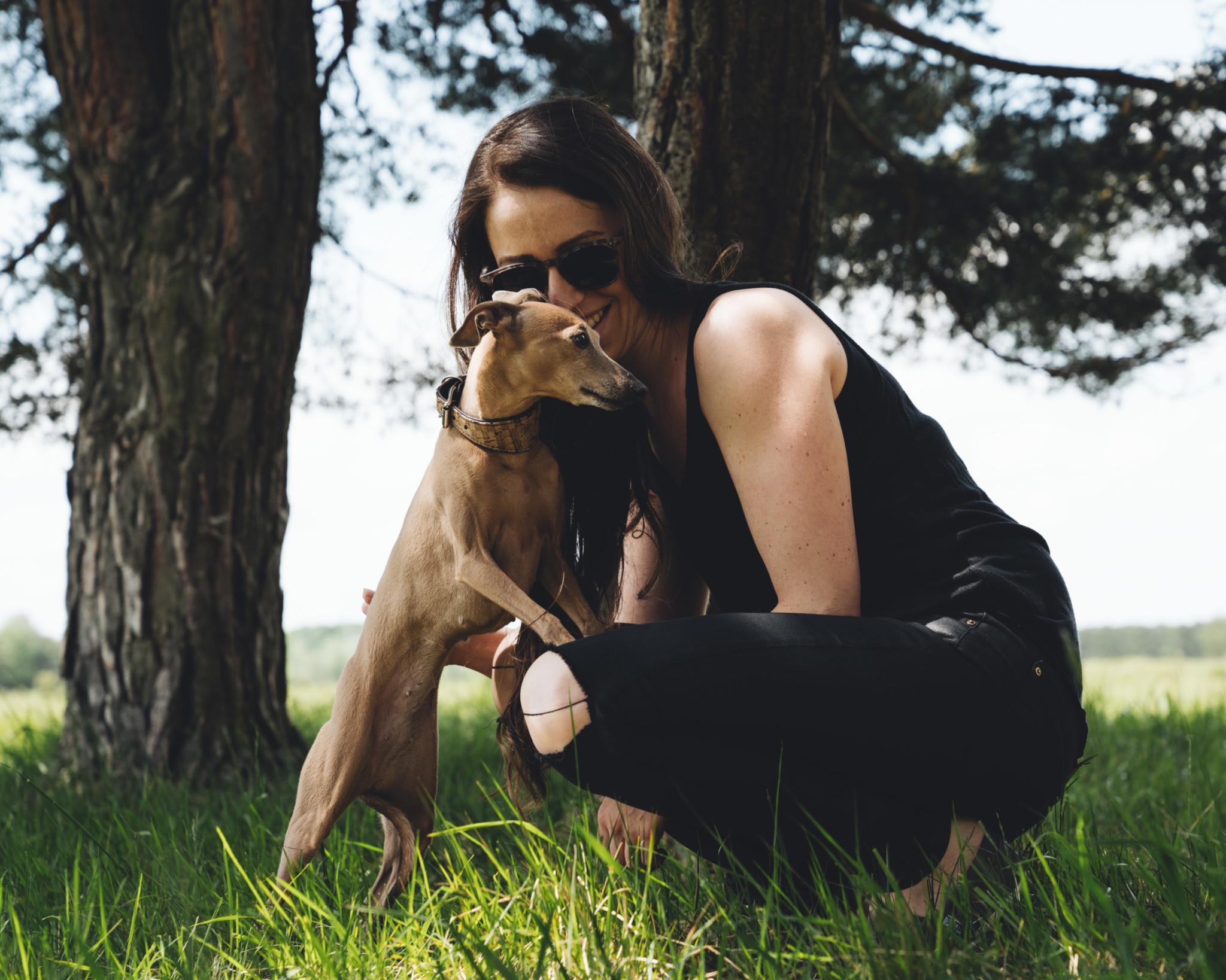 Hunde Fotoshooting