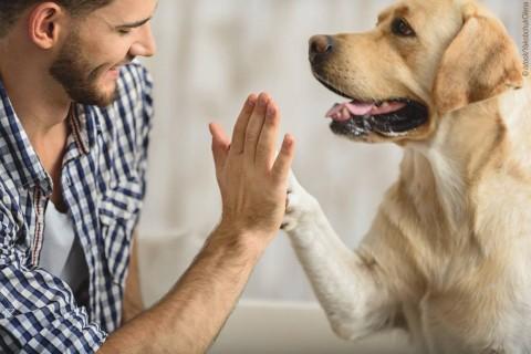 """""""Natürlich kann man ohne Hund leben, es lohnt sich nur nicht"""" [Anzeige]"""