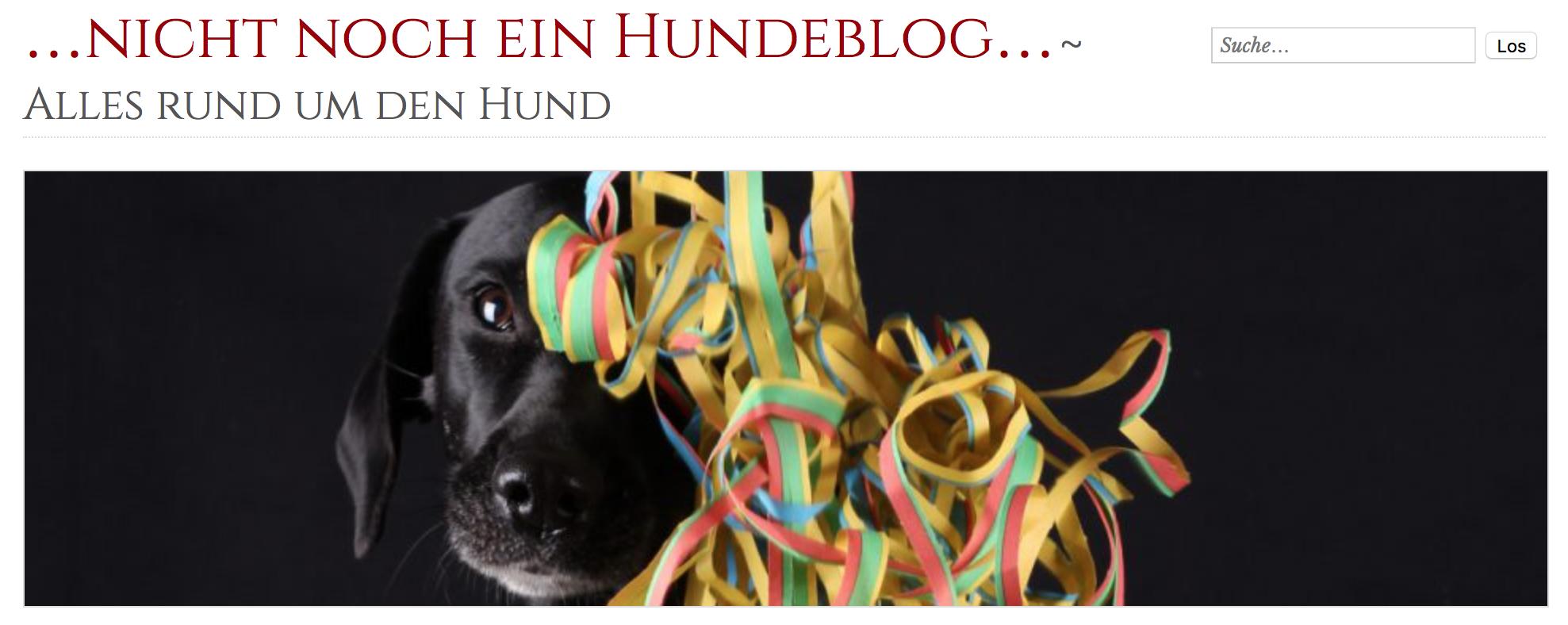 Hundeblog des Jahres: Nicht noch ein Hundeblog.