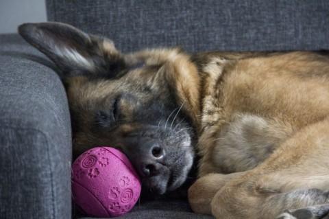 Couchsurfing.