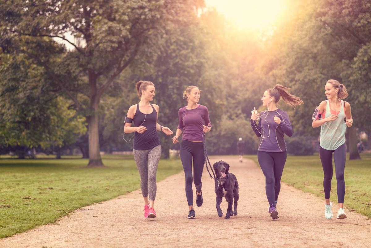 Hundefreunde kennenlernen mit Spontacts