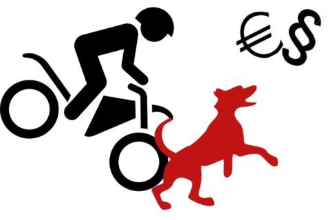 """Schnell ist es passiert – Warum die Hundehaftpflichtversicherung ein """"Muss"""" ist"""