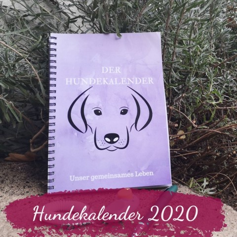 Hundekalender 2020 von Pfötchentraining